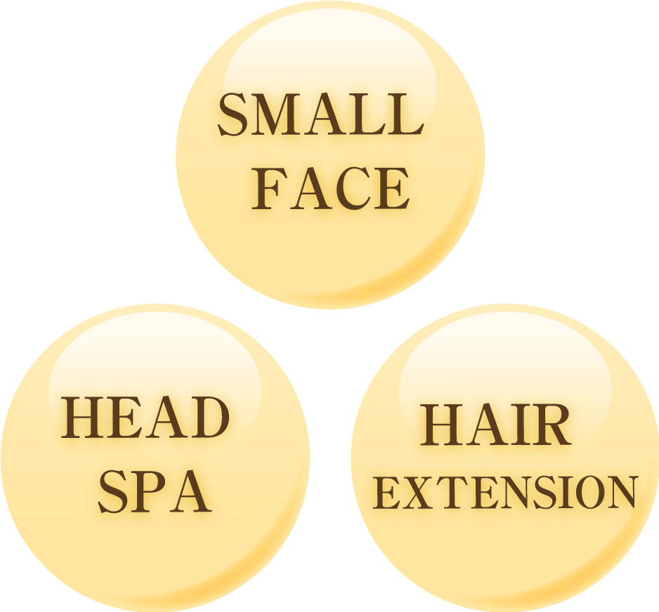 SMALL FACE/HEAD SPA/HAIR EXTENSION